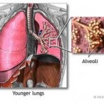 Pulmonary function